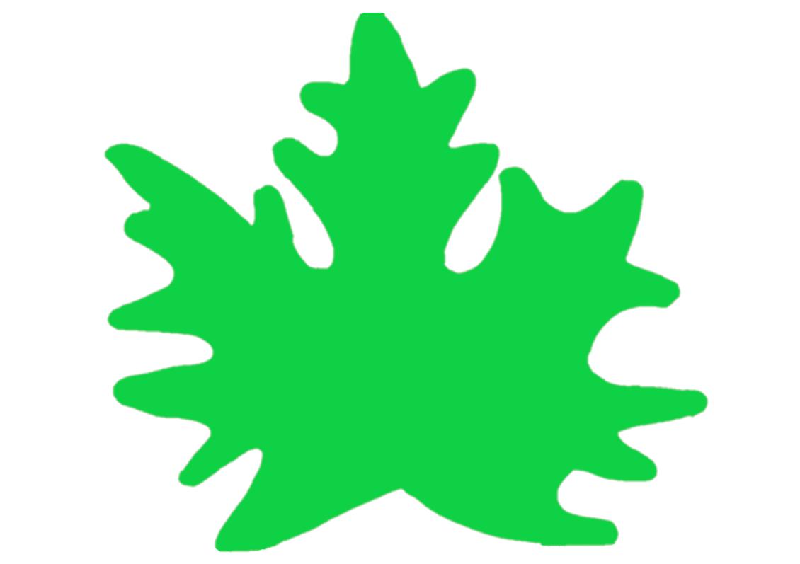 Кленовый лист зеленый - шаблон